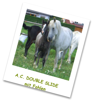 A.C. DOUBLE SLIDEmit Fohlen